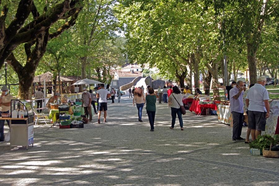 Sertã: Mercado mensal 'Produtos da Terra' destaca o Artesanato em maio