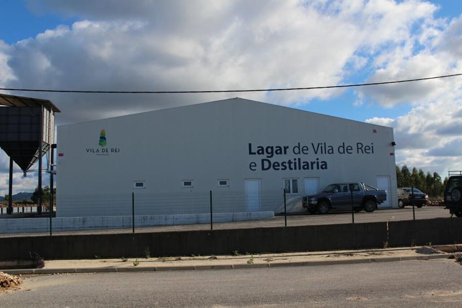 Vila de Rei: Concedida licença para produção de Azeite da Beira Baixa DOP